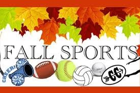 Pictures of Sports Balls used in the Fall